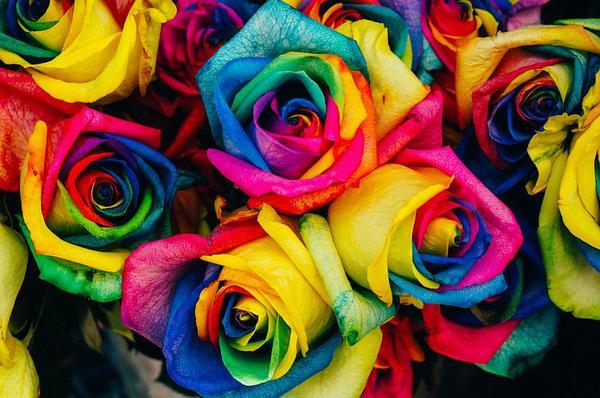 dobra hurtownia - kwiaty sztuczne