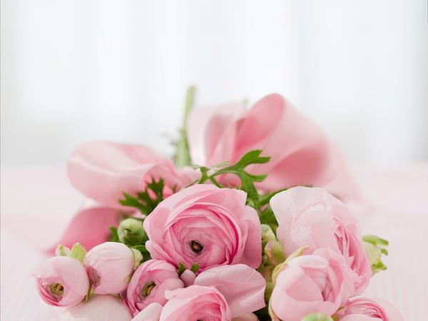 Na jakie sztuczne kwiaty warto się zdecydować?
